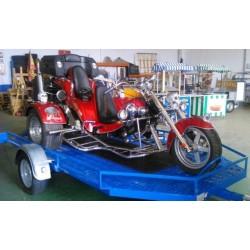 Remolque plataforma para Trike